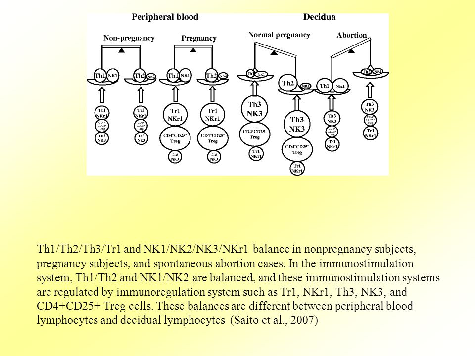 Th1/Th2/Th3/Tr1 and NK1/NK2/NK3/NKr1 balance in nonpregnancy subjects, pregnancy subjects, and spontaneous abortion cases. In the immunostimulation sy