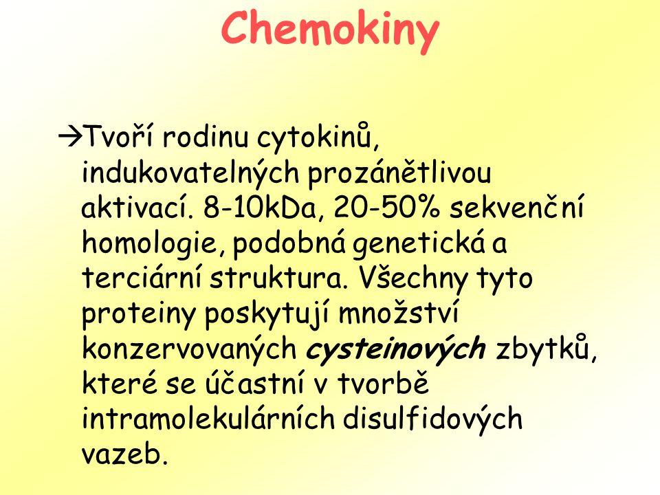 Chemokiny  Tvoří rodinu cytokinů, indukovatelných prozánětlivou aktivací. 8-10kDa, 20-50% sekvenční homologie, podobná genetická a terciární struktur