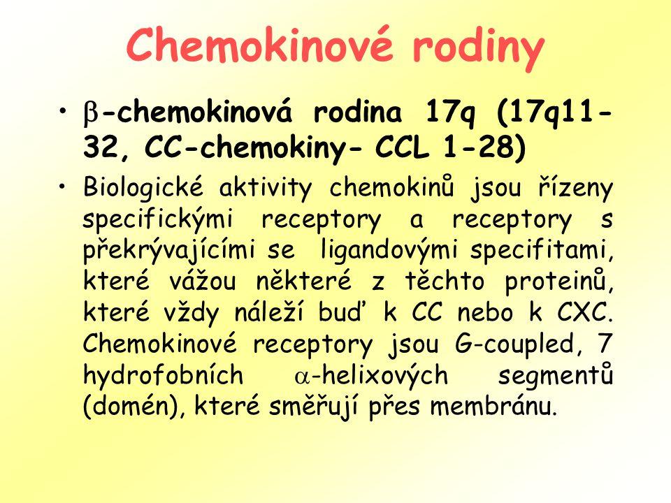 Chemokinové rodiny  -chemokinová rodina 17q (17q11- 32, CC-chemokiny- CCL 1-28) Biologické aktivity chemokinů jsou řízeny specifickými receptory a receptory s překrývajícími se ligandovými specifitami, které vážou některé z těchto proteinů, které vždy náleží buď k CC nebo k CXC.