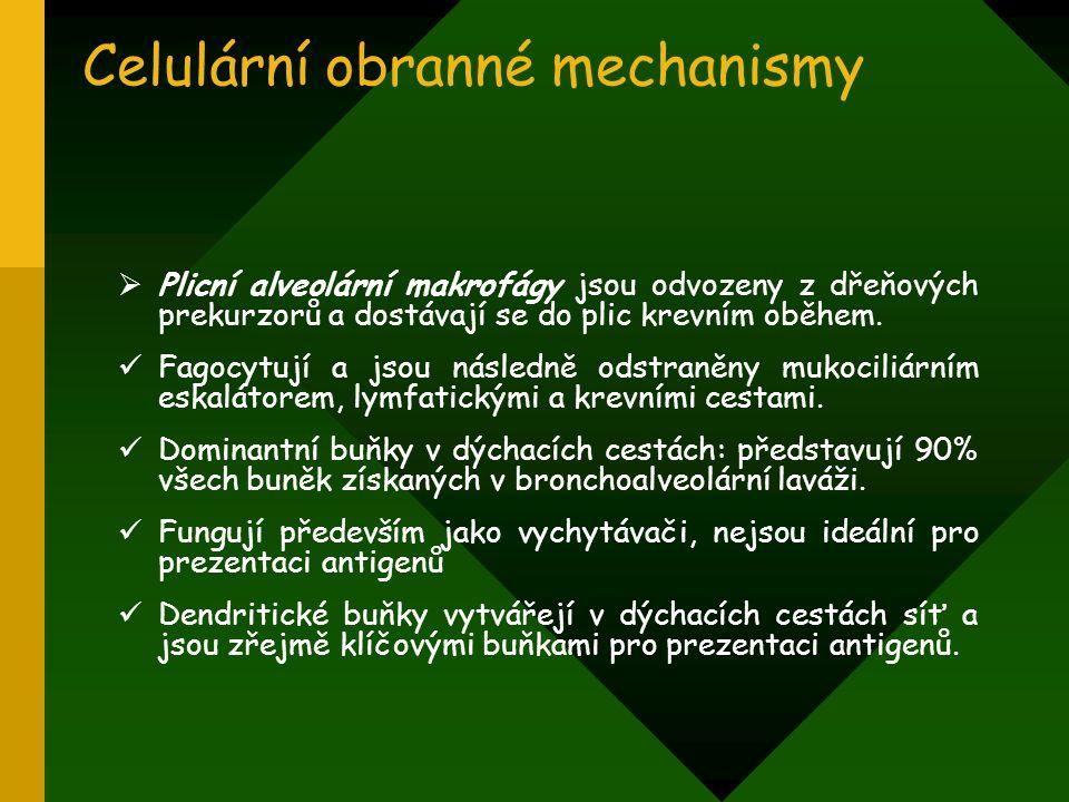 Celulární obranné mechanismy  Plicní alveolární makrofágy jsou odvozeny z dřeňových prekurzorů a dostávají se do plic krevním oběhem. Fagocytují a js
