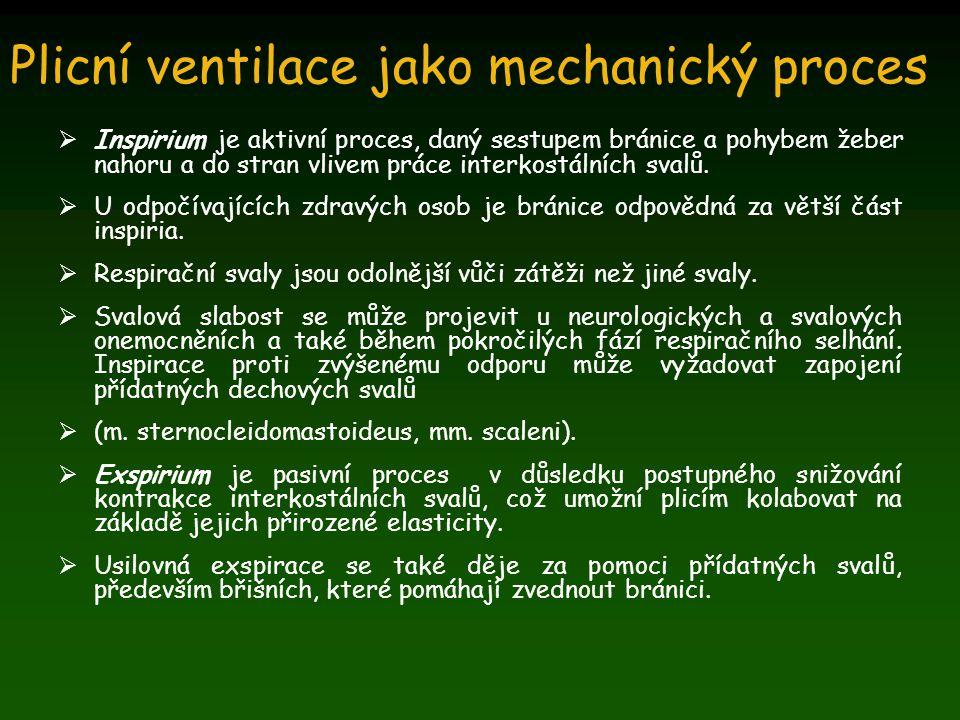Plicní ventilace jako mechanický proces  Inspirium je aktivní proces, daný sestupem bránice a pohybem žeber nahoru a do stran vlivem práce interkostá