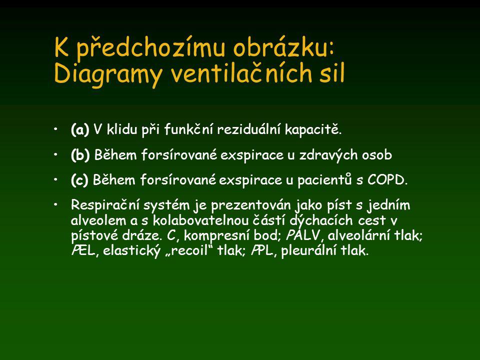 K předchozímu obrázku: Diagramy ventilačních sil (a) V klidu při funkční reziduální kapacitě. (b) Během forsírované exspirace u zdravých osob (c) Běhe