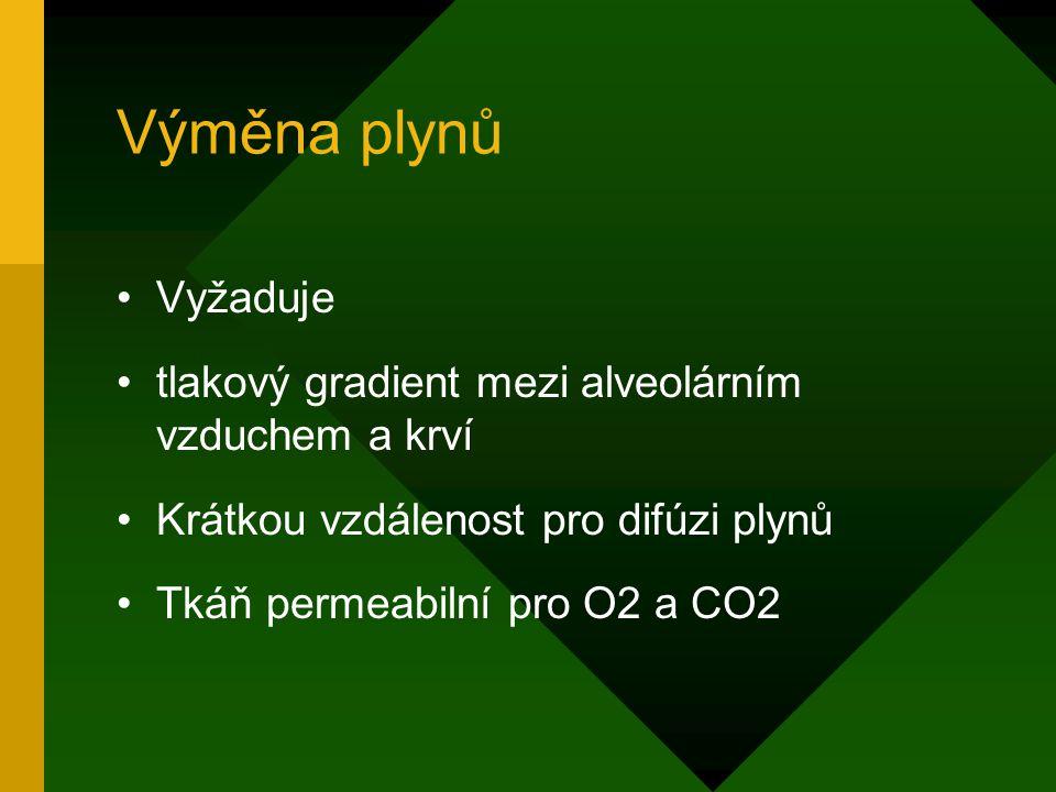 Výměna plynů Vyžaduje tlakový gradient mezi alveolárním vzduchem a krví Krátkou vzdálenost pro difúzi plynů Tkáň permeabilní pro O2 a CO2