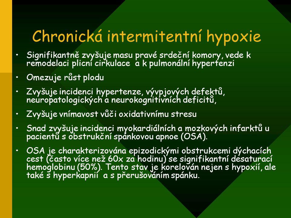 Chronická intermitentní hypoxie Signifikantně zvyšuje masu pravé srdeční komory, vede k remodelaci plicní cirkulace a k pulmonální hypertenzi Omezuje