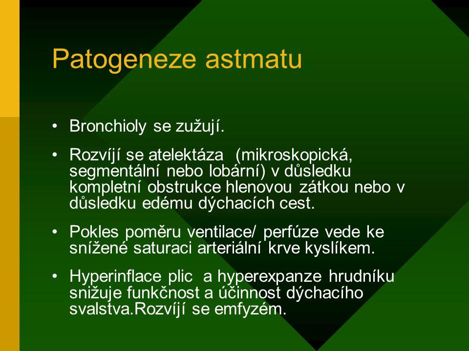 Patogeneze astmatu Bronchioly se zužují. Rozvíjí se atelektáza (mikroskopická, segmentální nebo lobární) v důsledku kompletní obstrukce hlenovou zátko