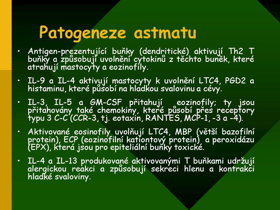 Patogeneze astmatu Antigen-prezentující buňky (dendritické) aktivují Th2 T buňky a způsobují uvolnění cytokinů z těchto buněk, které atrahují mastocyt