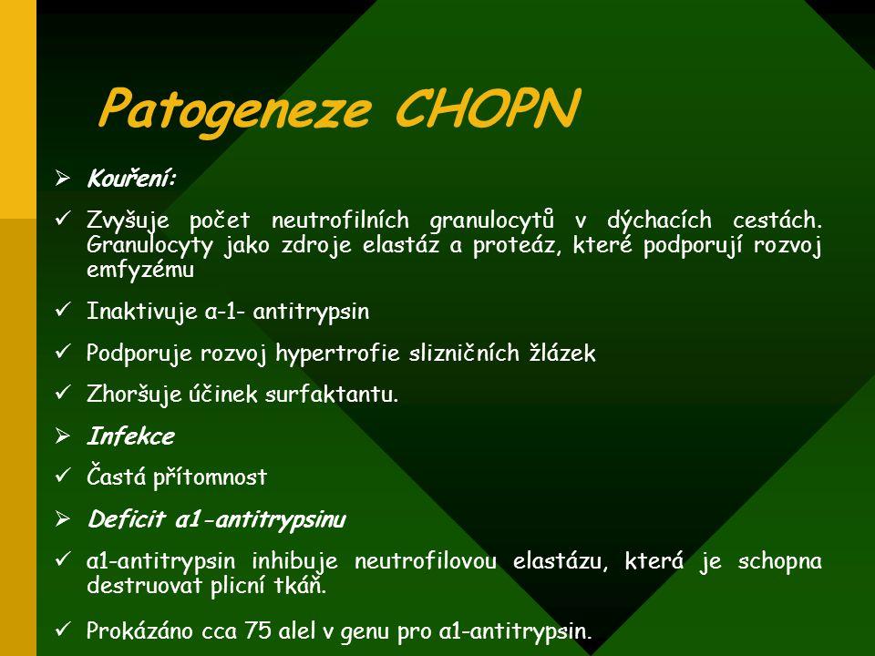 Patogeneze CHOPN  Kouření: Zvyšuje počet neutrofilních granulocytů v dýchacích cestách. Granulocyty jako zdroje elastáz a proteáz, které podporují ro