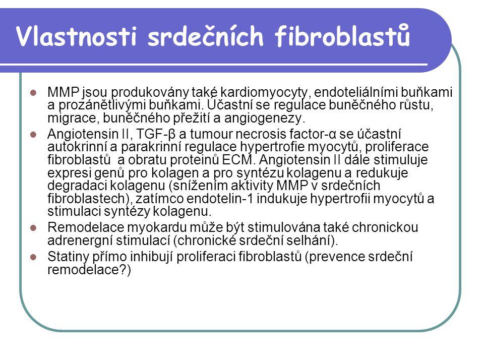 Vlastnosti srdečních fibroblastů MMP jsou produkovány také kardiomyocyty, endoteliálními buňkami a prozánětlivými buňkami. Účastní se regulace buněčné