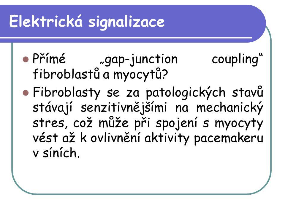 """Elektrická signalizace Přímé """"gap-junction coupling"""" fibroblastů a myocytů? Fibroblasty se za patologických stavů stávají senzitivnějšími na mechanick"""