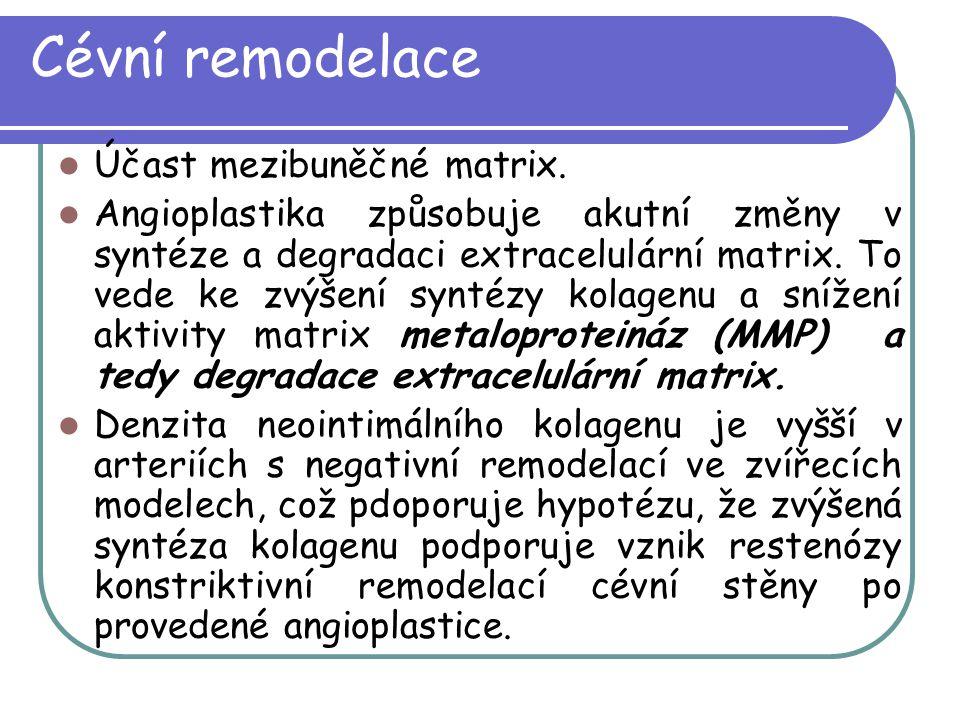 Cévní remodelace Účast mezibuněčné matrix. Angioplastika způsobuje akutní změny v syntéze a degradaci extracelulární matrix. To vede ke zvýšení syntéz