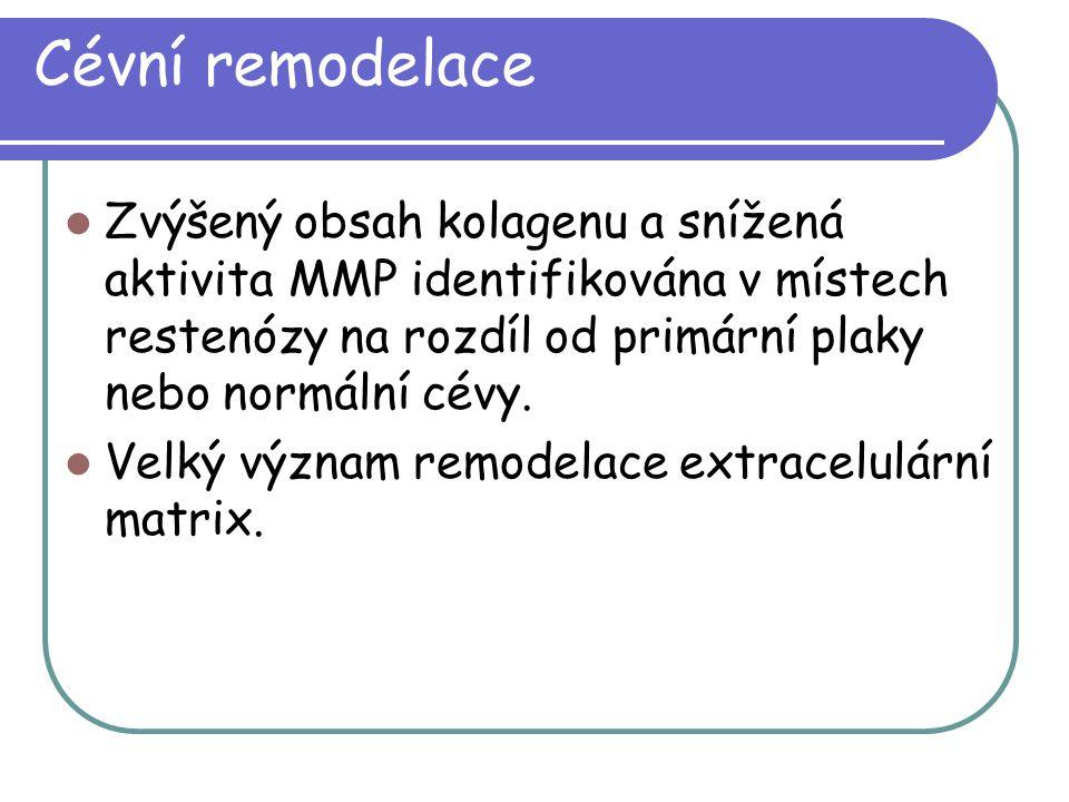 Cévní remodelace Zvýšený obsah kolagenu a snížená aktivita MMP identifikována v místech restenózy na rozdíl od primární plaky nebo normální cévy. Velk