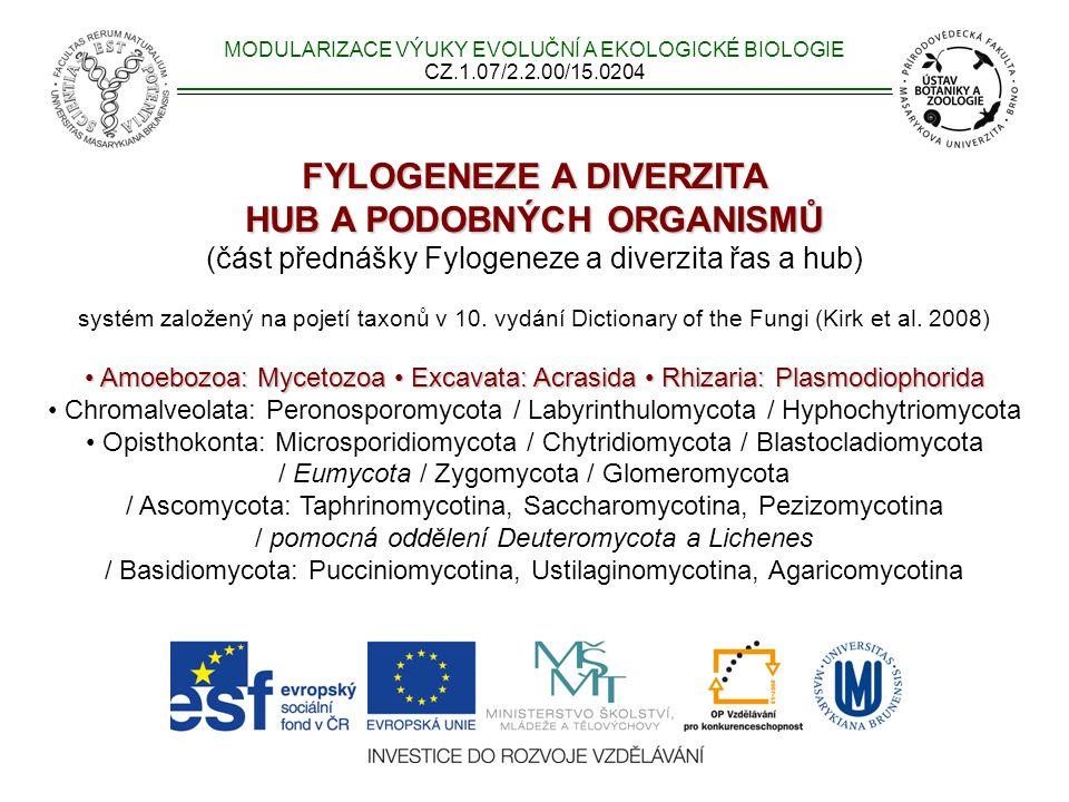 FYLOGENEZE A DIVERZITA HUB A PODOBNÝCH ORGANISMŮ HUB A PODOBNÝCH ORGANISMŮ (část přednášky Fylogeneze a diverzita řas a hub) systém založený na pojetí taxonů v 10.
