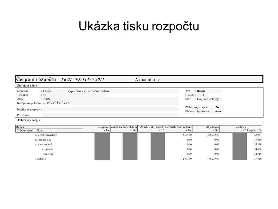 Ukázka tisku rozpočtu