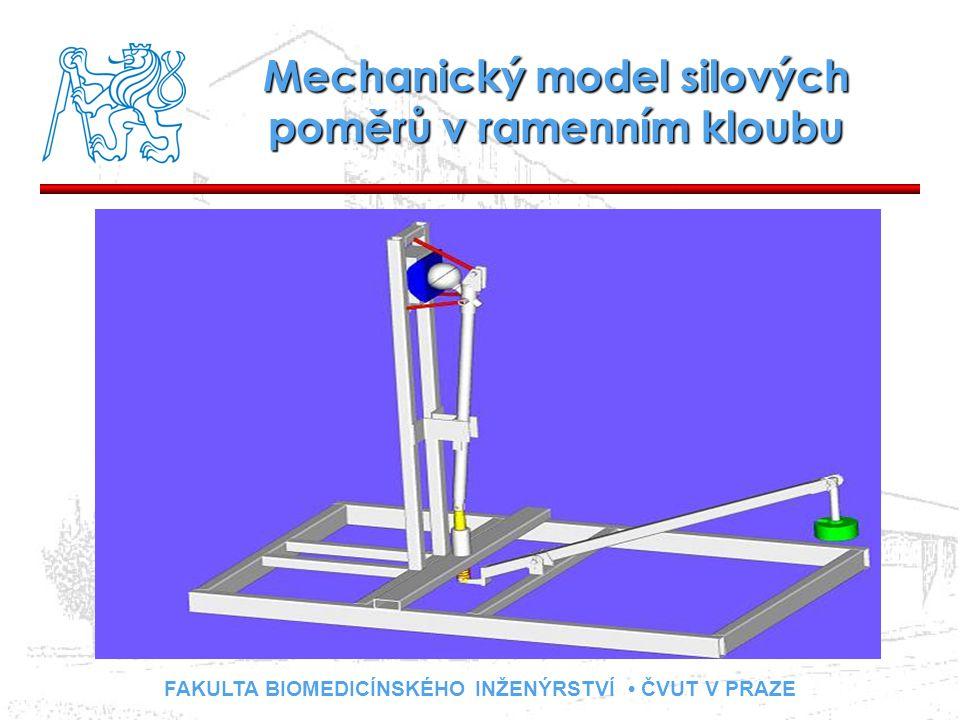 FAKULTA BIOMEDICÍNSKÉHO INŽENÝRSTVÍ ČVUT V PRAZE Mechanický model silových poměrů v ramenním kloubu