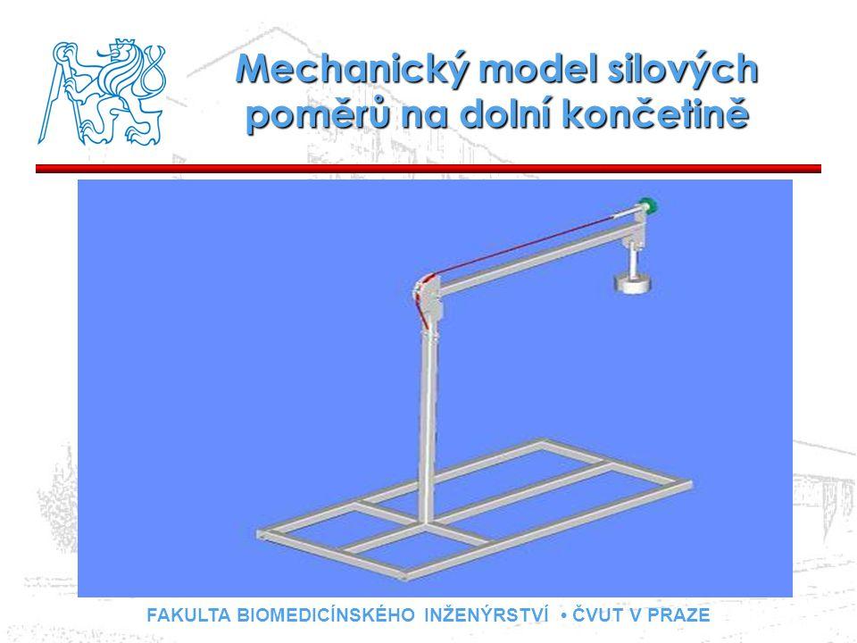 FAKULTA BIOMEDICÍNSKÉHO INŽENÝRSTVÍ ČVUT V PRAZE Mechanický model silových poměrů na dolní končetině