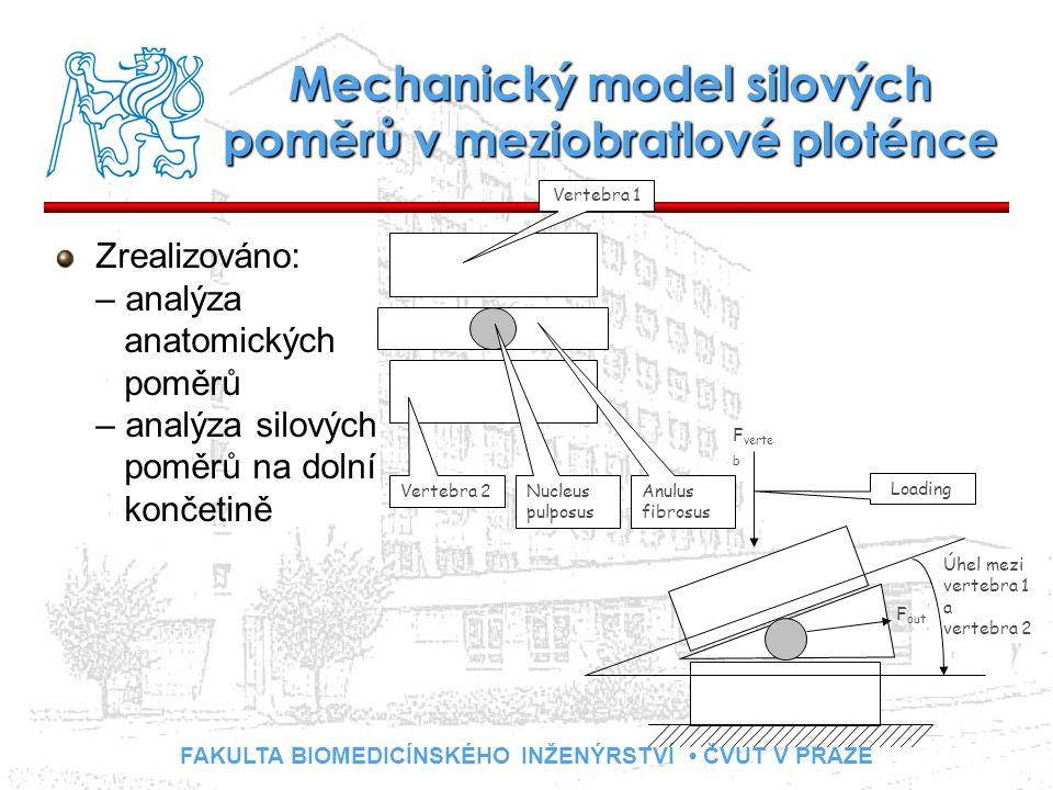 FAKULTA BIOMEDICÍNSKÉHO INŽENÝRSTVÍ ČVUT V PRAZE Mechanický model silových poměrů v meziobratlové ploténce Zrealizováno: – analýza anatomických poměrů – analýza silových poměrů na dolní končetině Vertebra 2 Nucleus pulposus Anulus fibrosus Vertebra 1 Úhel mezi vertebra 1 a vertebra 2 Loading F verte b F out