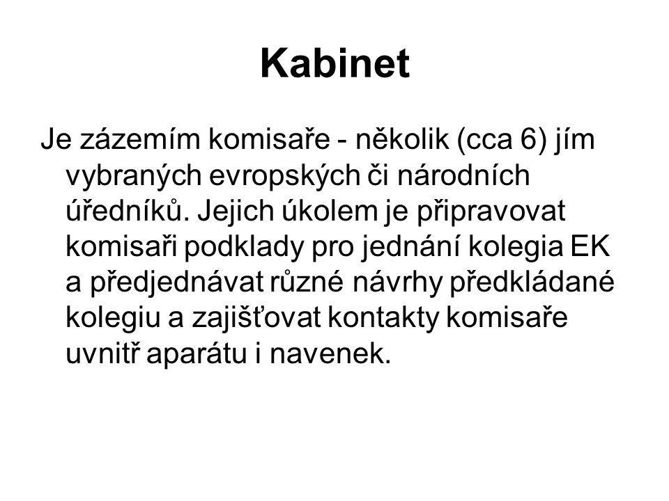 Kabinet Je zázemím komisaře - několik (cca 6) jím vybraných evropských či národních úředníků.