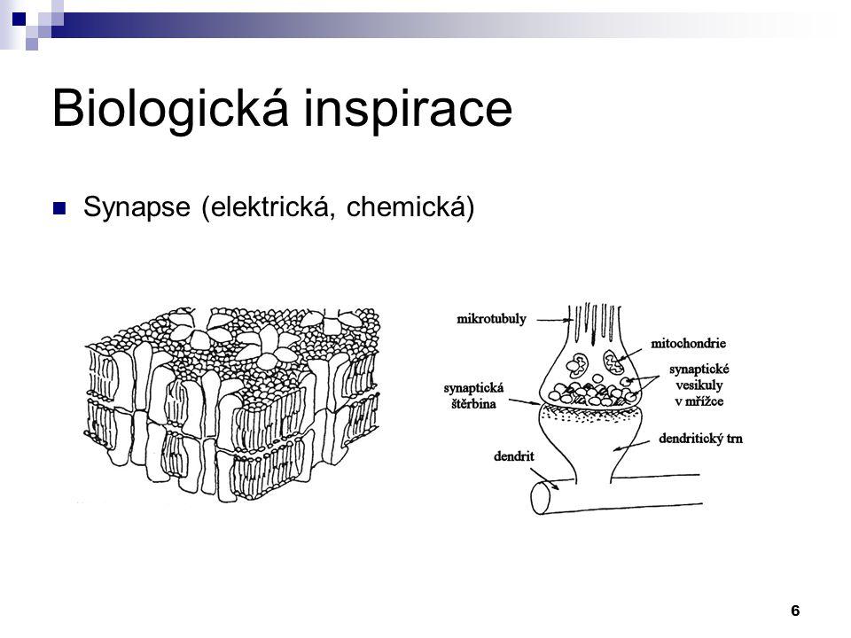 6 Biologická inspirace Synapse (elektrická, chemická)