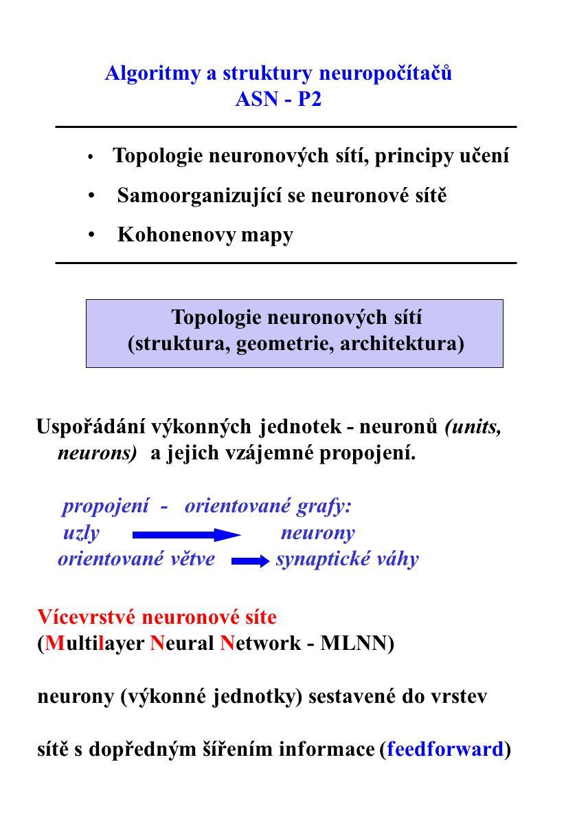 Algoritmy a struktury neuropočítačů ASN - P2 Topologie neuronových sítí, principy učení Samoorganizující se neuronové sítě Kohonenovy mapy Topologie n