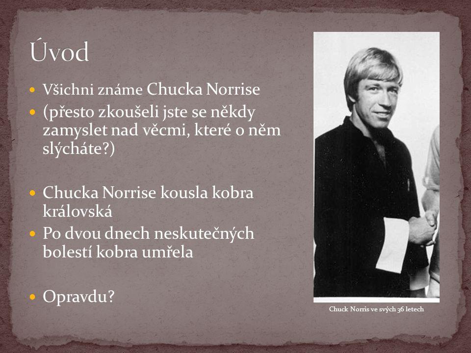 Všichni známe Chucka Norrise (přesto zkoušeli jste se někdy zamyslet nad věcmi, které o něm slýcháte?) Chucka Norrise kousla kobra královská Po dvou dnech neskutečných bolestí kobra umřela Opravdu.