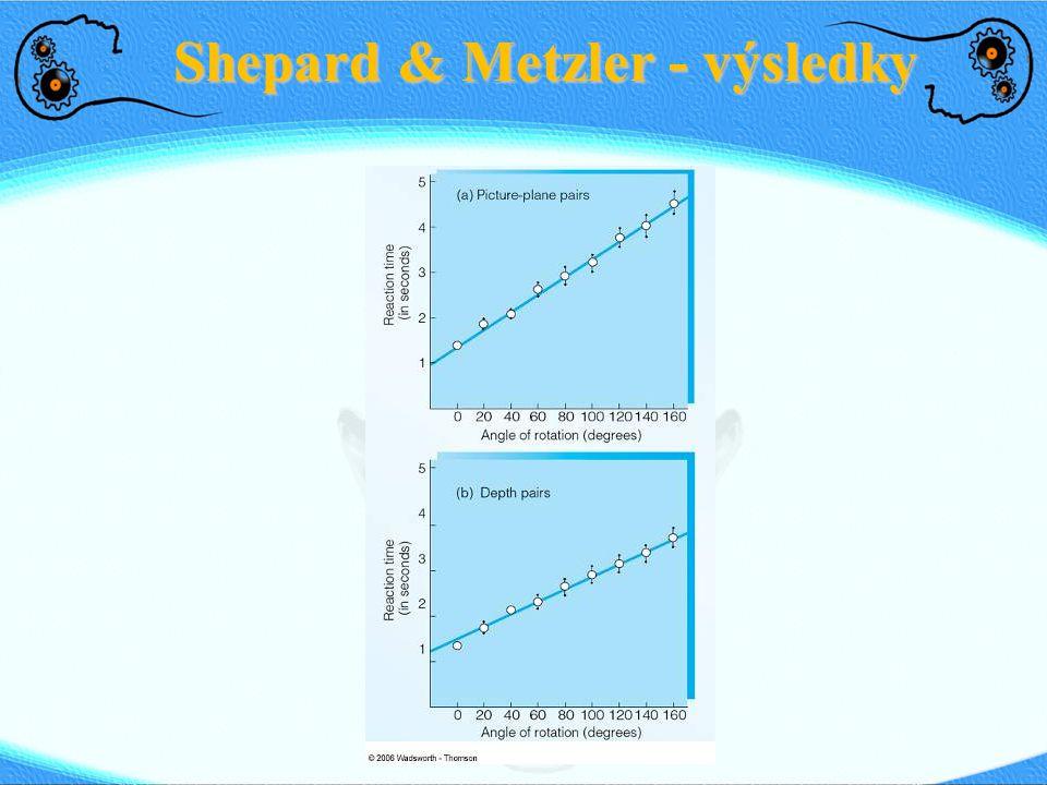 Shepard & Metzler - výsledky