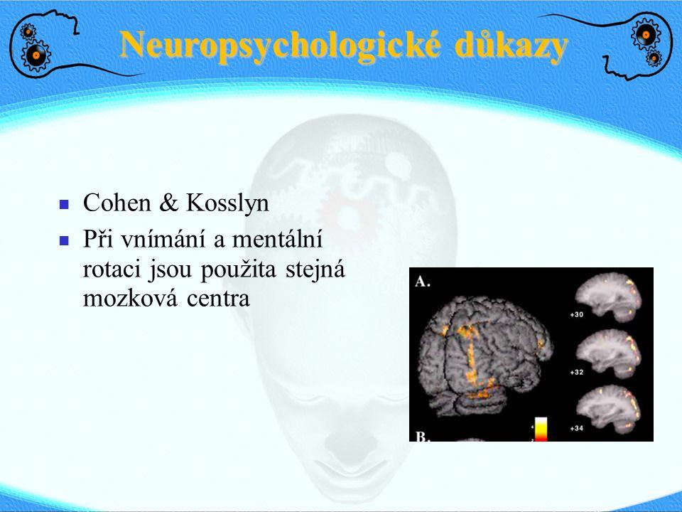 Neuropsychologické důkazy Cohen & Kosslyn Při vnímání a mentální rotaci jsou použita stejná mozková centra