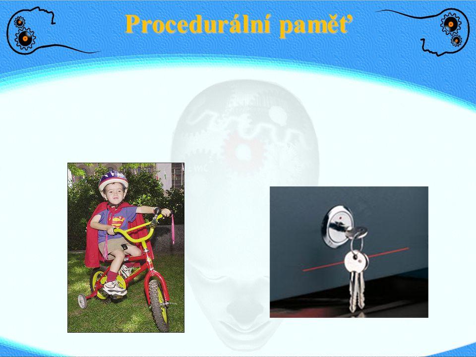 Procedurální paměť