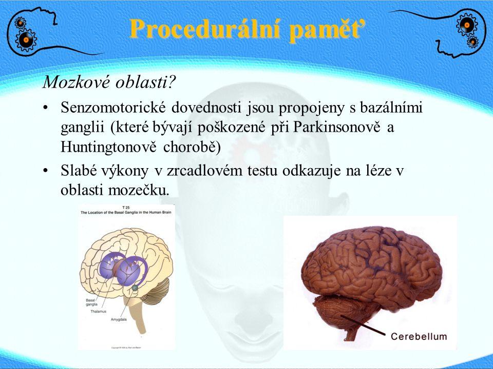 Mozkové oblasti.