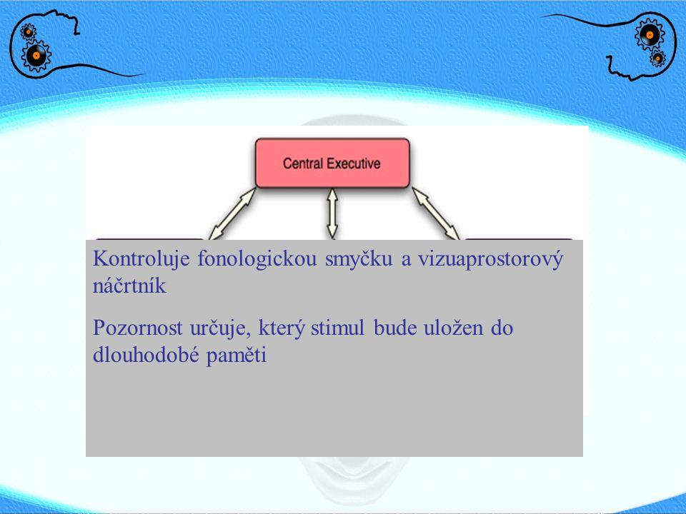Kontroluje fonologickou smyčku a vizuaprostorový náčrtník Pozornost určuje, který stimul bude uložen do dlouhodobé paměti