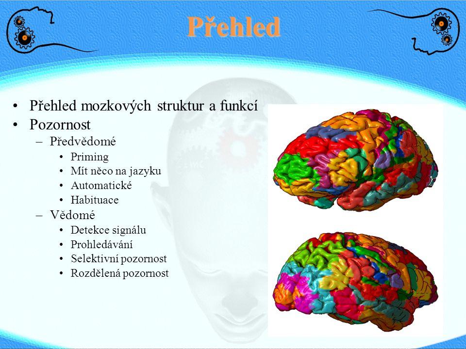 Přehled Přehled mozkových struktur a funkcí Pozornost –Předvědomé Priming Mít něco na jazyku Automatické Habituace –Vědomé Detekce signálu Prohledávání Selektivní pozornost Rozdělená pozornost