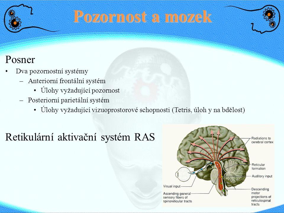 Pozornost a mozek Posner Dva pozornostní systémy –Anteriorní frontální systém Úlohy vyžadující pozornost –Posteriorní parietální systém Úlohy vyžadující vizuoprostorové schopnosti (Tetris, úloh y na bdělost) Retikulární aktivační systém RAS