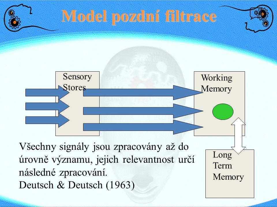 Model pozdní filtrace Long Term Memory Working Memory Sensory Stores Všechny signály jsou zpracovány až do úrovně významu, jejich relevantnost určí následné zpracování.