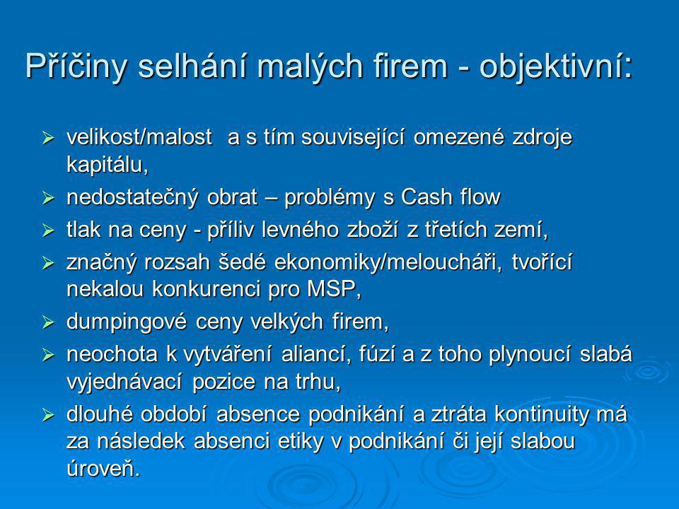 Příčiny selhání malých firem - objektivní :  velikost/malost a s tím související omezené zdroje kapitálu,  nedostatečný obrat – problémy s Cash flow