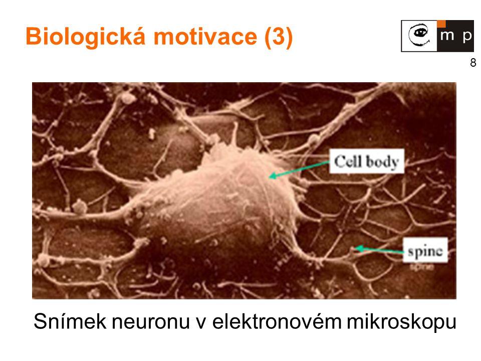8 Biologická motivace (3) Snímek neuronu v elektronovém mikroskopu