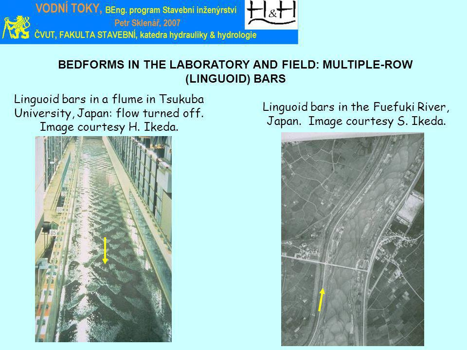 BEDFORMS IN THE LABORATORY AND FIELD: MULTIPLE-ROW (LINGUOID) BARS Linguoid bars in a flume in Tsukuba University, Japan: flow turned off.