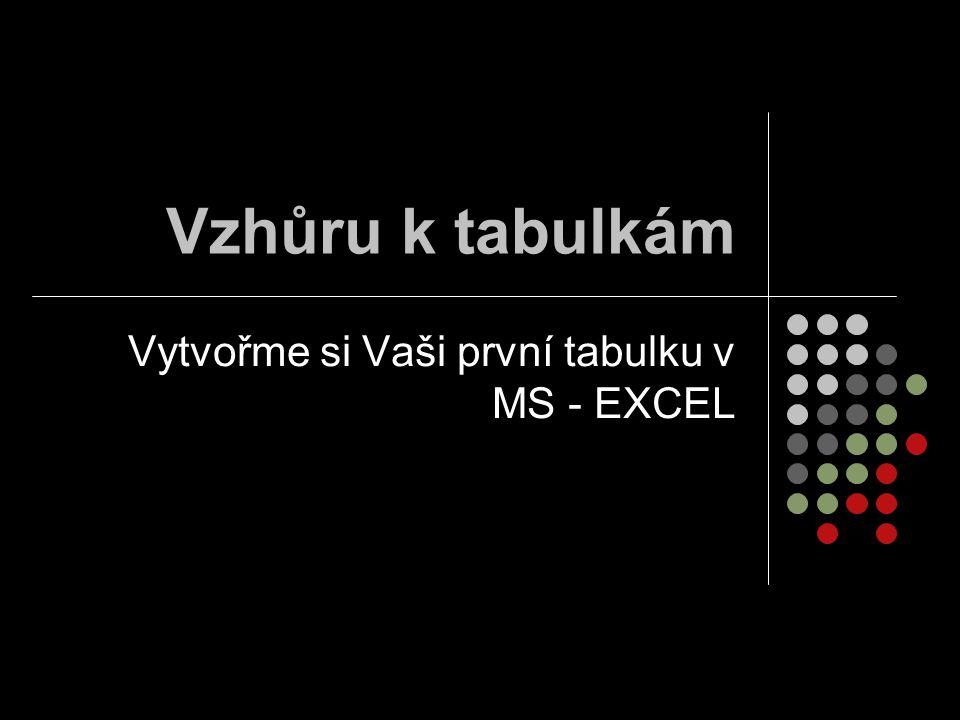 Vzhůru k tabulkám Vytvořme si Vaši první tabulku v MS - EXCEL