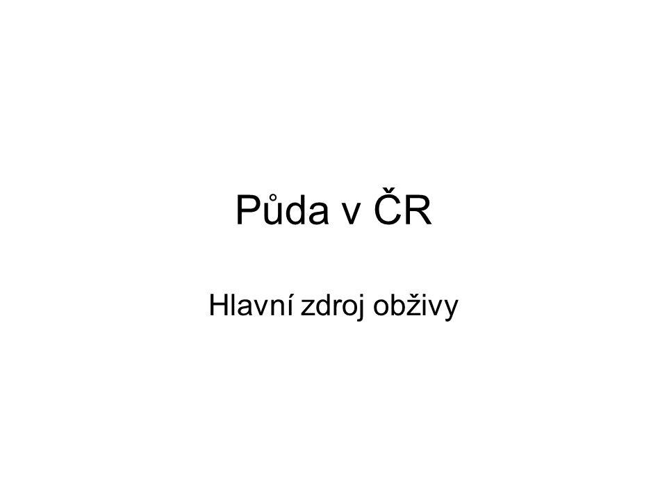 Půda v ČR Hlavní zdroj obživy