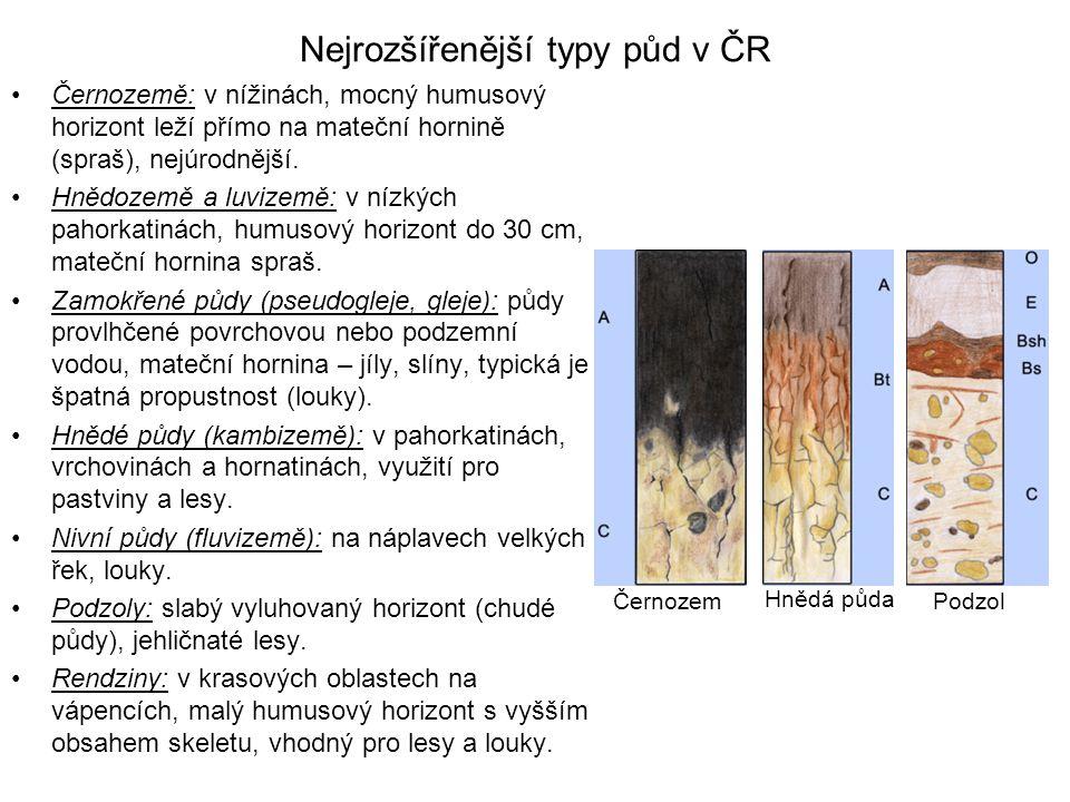 Nejrozšířenější typy půd v ČR Černozemě: v nížinách, mocný humusový horizont leží přímo na mateční hornině (spraš), nejúrodnější. Hnědozemě a luvizemě