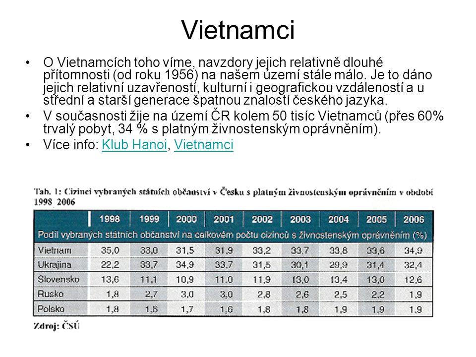 Vietnamci O Vietnamcích toho víme, navzdory jejich relativně dlouhé přítomnosti (od roku 1956) na našem území stále málo. Je to dáno jejich relativní