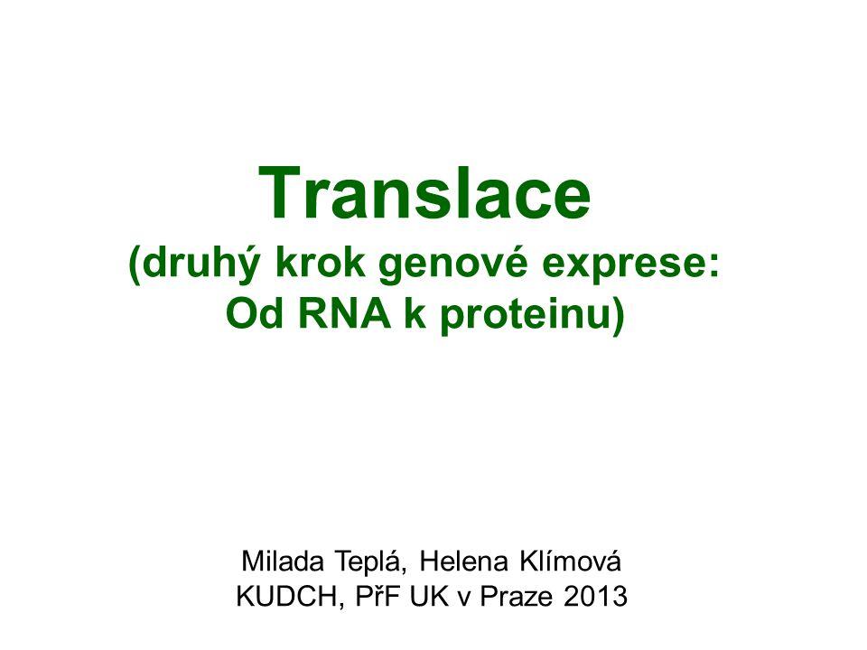 Translace (druhý krok genové exprese: Od RNA k proteinu) Milada Teplá, Helena Klímová KUDCH, PřF UK v Praze 2013