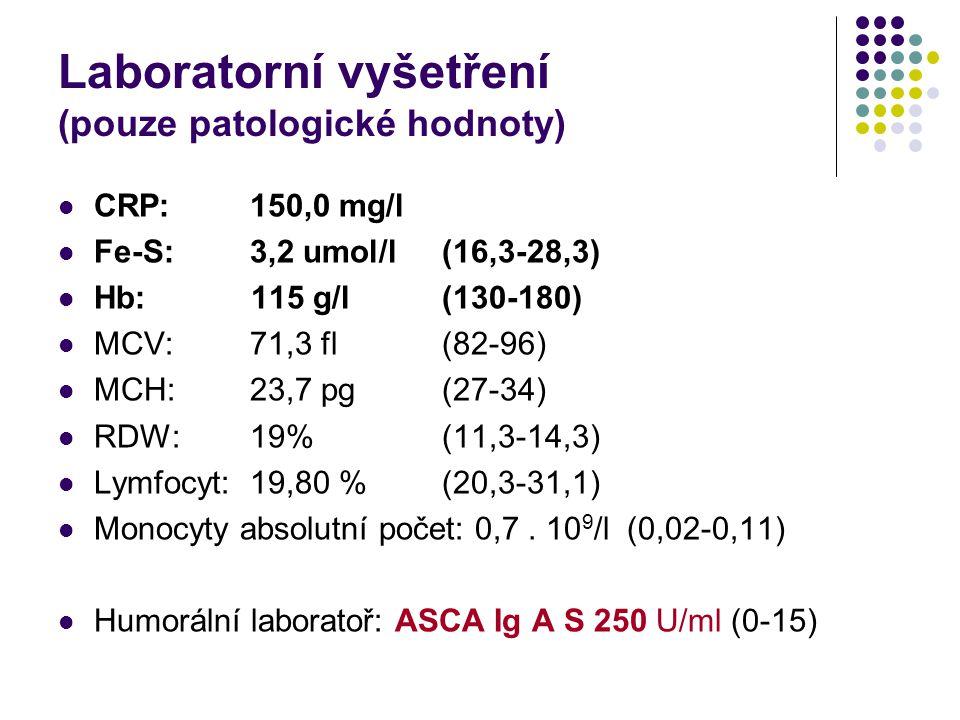 Laboratorní vyšetření (pouze patologické hodnoty) CRP:150,0 mg/l Fe-S:3,2 umol/l(16,3-28,3) Hb: 115 g/l(130-180) MCV:71,3 fl(82-96) MCH:23,7 pg(27-34)