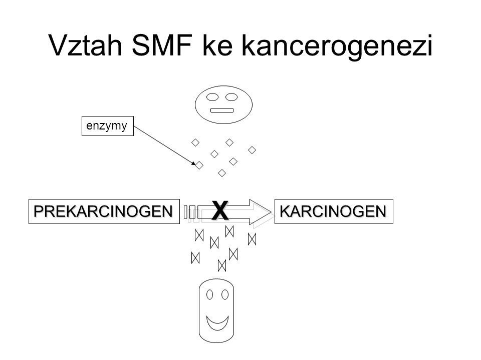 Vztah SMF ke kancerogenezi PREKARCINOGENKARCINOGEN enzymy X