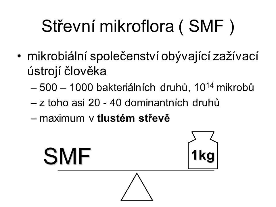 Střevní mikroflora ( SMF ) mikrobiální společenství obývající zažívací ústrojí člověka –500 – 1000 bakteriálních druhů, 10 14 mikrobů –z toho asi 20 -