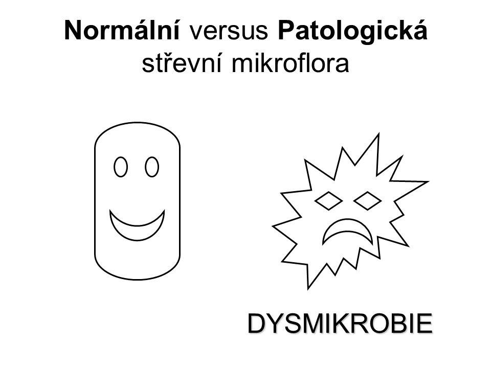 Normální versus Patologická střevní mikroflora DYSMIKROBIE