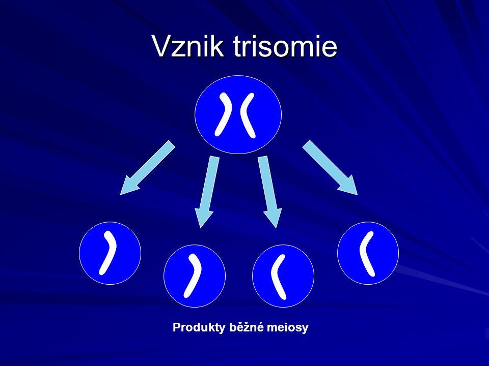"""Vznik trisomie Produkty """"špatné meiosy Produkty běžné meiosy"""