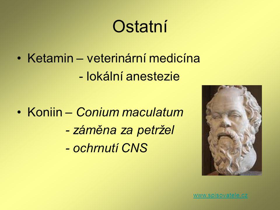 Ostatní Ketamin – veterinární medicína - lokální anestezie Koniin – Conium maculatum - záměna za petržel - ochrnutí CNS www.spisovatele.cz