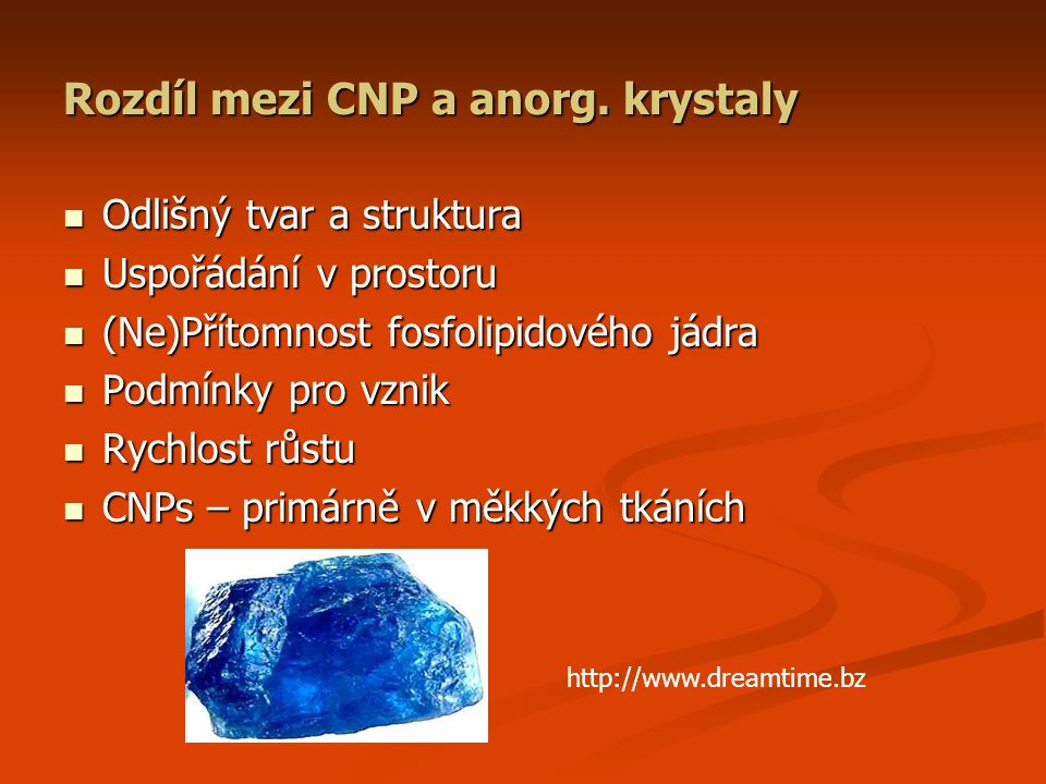 Rozdíl mezi CNP a anorg. krystaly Odlišný tvar a struktura Odlišný tvar a struktura Uspořádání v prostoru Uspořádání v prostoru (Ne)Přítomnost fosfoli