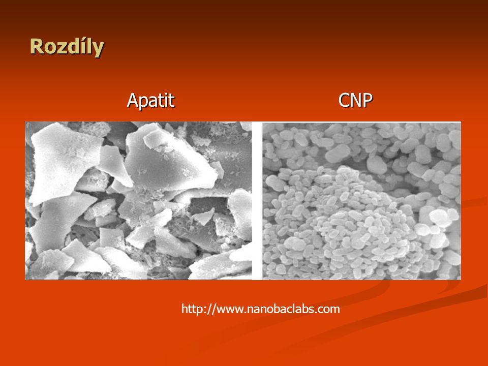 Rozdíly Apatit CNP http://www.nanobaclabs.com