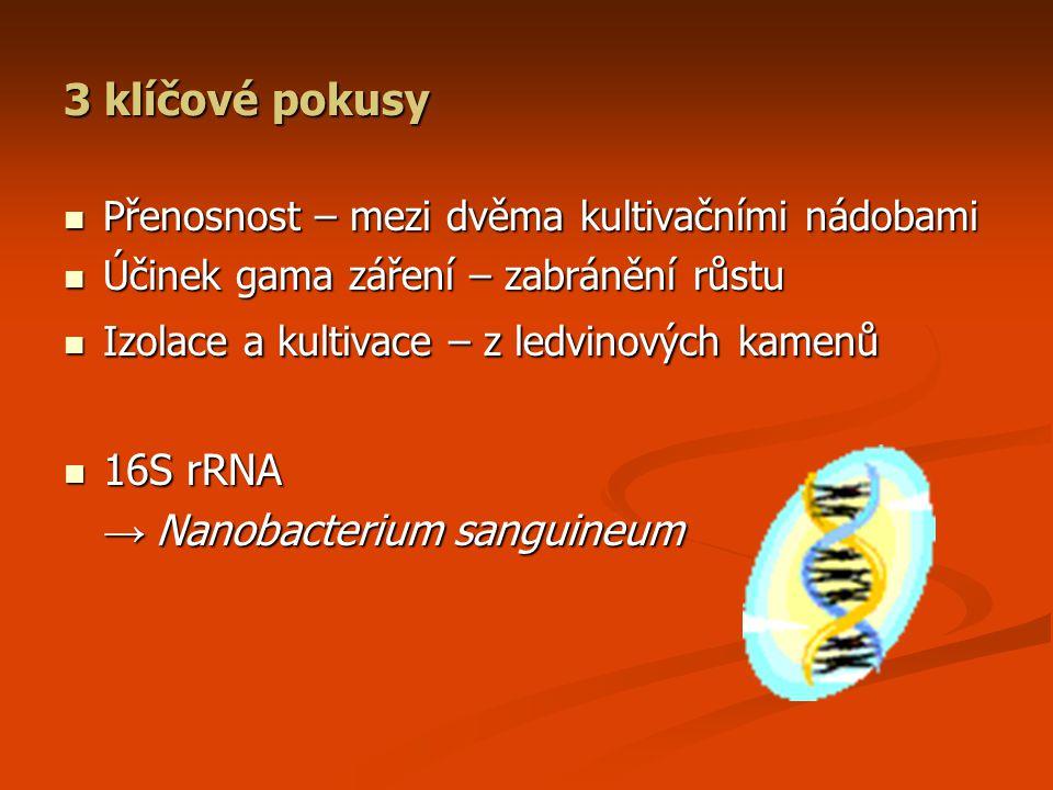 3 klíčové pokusy Přenosnost – mezi dvěma kultivačními nádobami Přenosnost – mezi dvěma kultivačními nádobami Účinek gama záření – zabránění růstu Účinek gama záření – zabránění růstu Izolace a kultivace – z ledvinových kamenů Izolace a kultivace – z ledvinových kamenů 16S rRNA 16S rRNA → Nanobacterium sanguineum