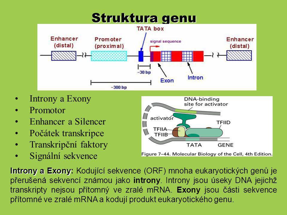 Místo počátku transkripce: místo kde začíná syntéza mRNA (pozice 0, - 30bp od TATA boxu).